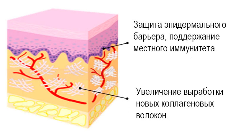 действие рф лифтинга на кожу